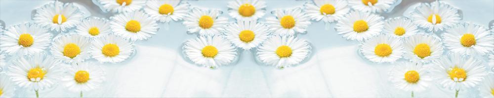 цветы_003