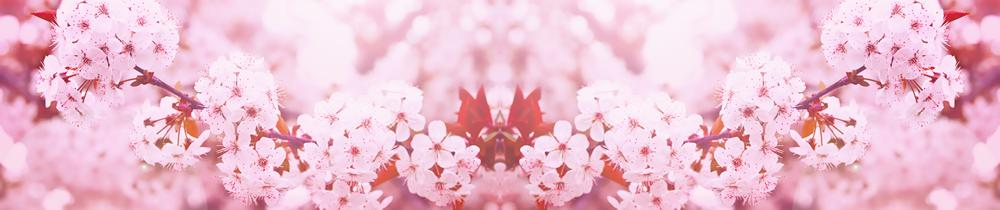 цветы_007