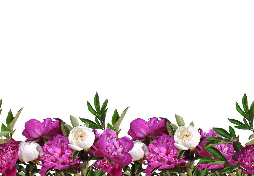 цветы_052