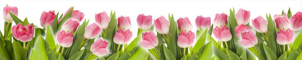 цветы_058
