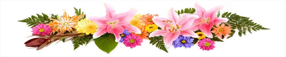цветы_060
