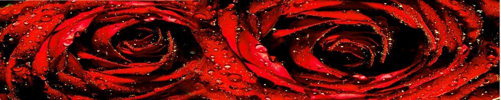 цветы_076