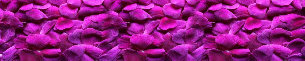 цветы_095