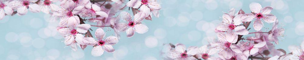 цветы_120