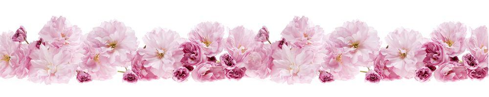 цветы_122