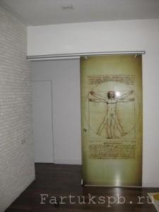 Откатная стеклянная дверь с фотопечатью